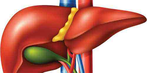 Why should I go to India for a Liver Transplant?