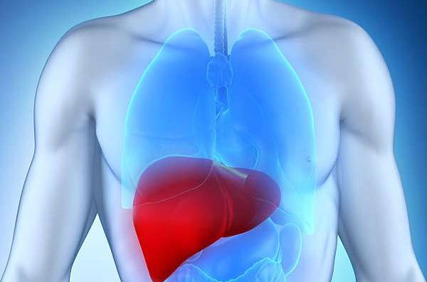 Useful Home Remedies for Managing Liver Disease